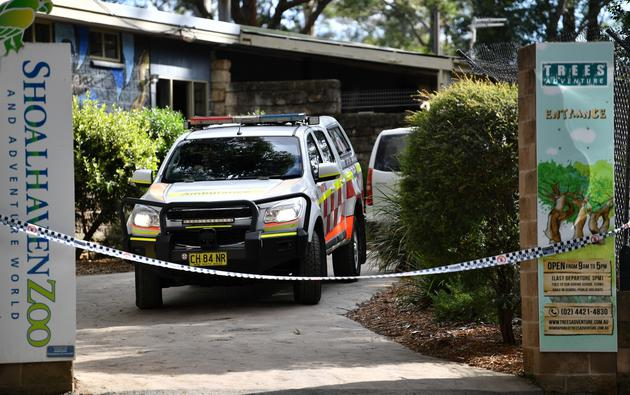 An ambulance is seen leaving the Shoalhaven Zoo, where a worker was wounded in a lion attack, in Nowra