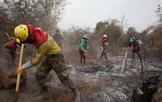 Forest fires in the Amazon - Bolivia