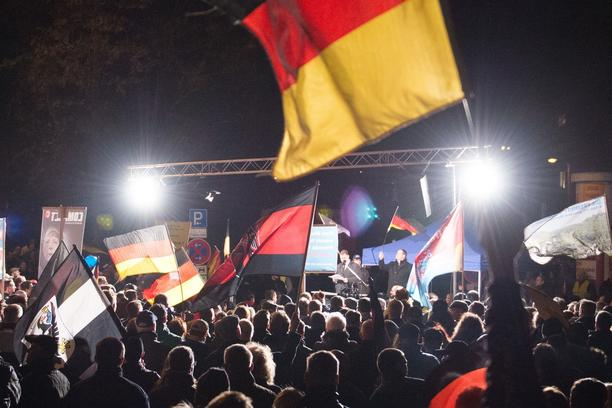 Participants in an 'Alternative for Germany' (AfD) rally wave their flags in Erfurt, Germany, 18 November 2015. This was to be the last Thuringian AfD rally for this year. Photo:?SEBASTIAN?KAHNERT/dpa/DPA/PIXSELL