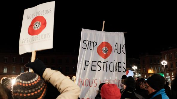 'We want our poppies back' Rally against pesticides - Toulouse