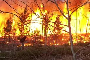 East Troublesome fire burns near Grandy, Colorado